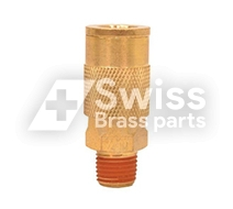 Brass NPT Mail Coupler